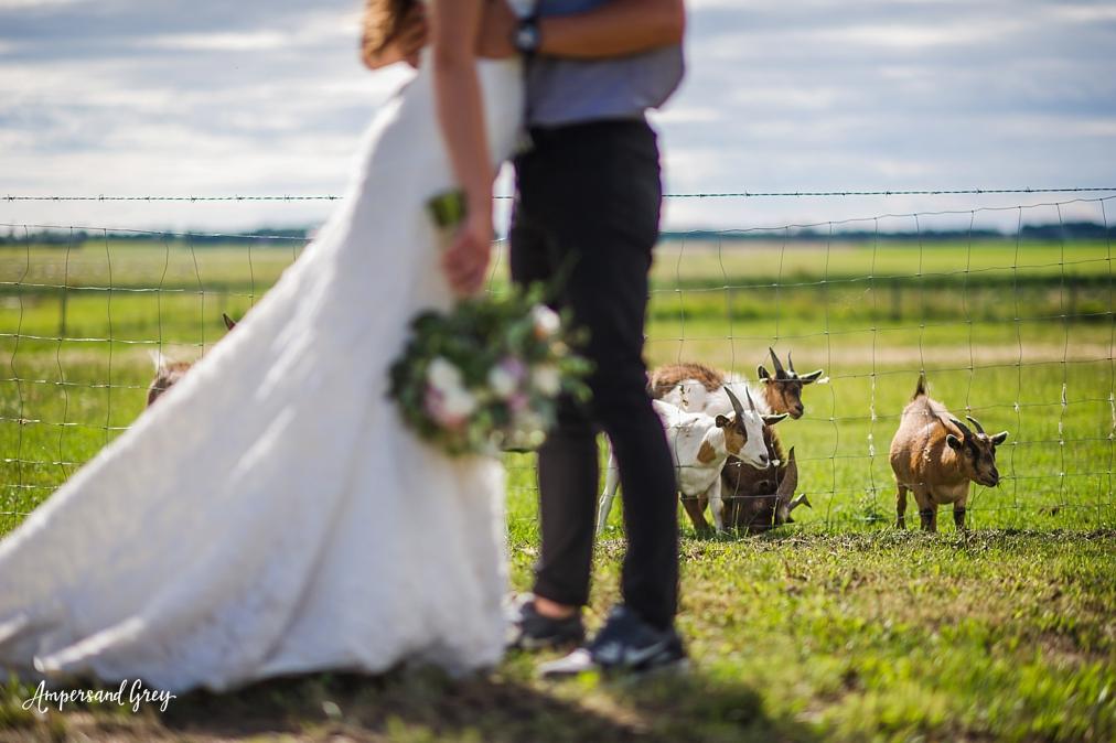 edmonton-wedding-photographer_0225